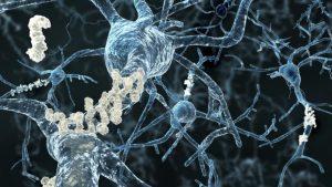 la struttura di una proteina