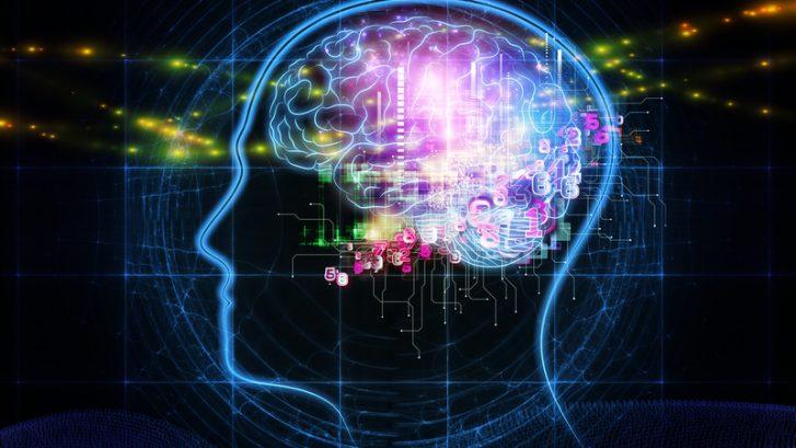 immagine stilizzata del comportamento del cervello
