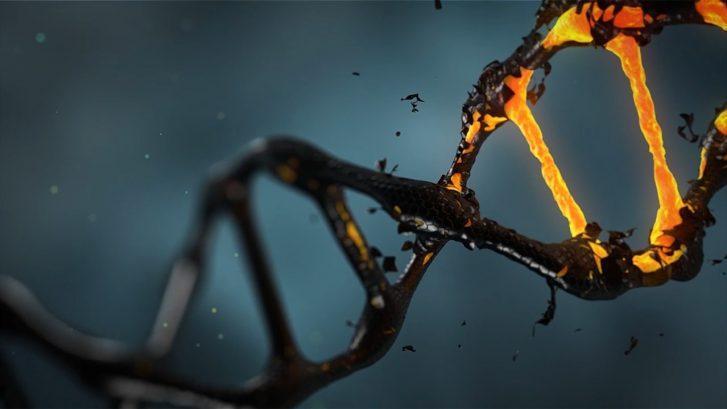 un'immagine della molecola di DNA