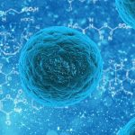 Cellule staminali: promesse e perplessità. A che punto è la ricerca?