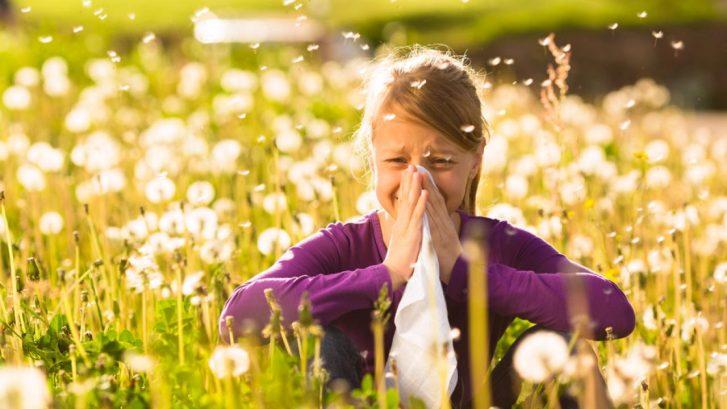 una bambina soffia il naso in mezzo ad un campo pieno di polline
